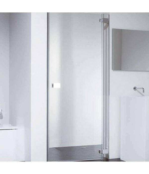 Душевая дверь в нишу Provex E-lite 0004-EN-05-GL R 90 см